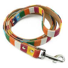 Laisse pour Chien Multicolore Taille M, Larg 20mm - Multicolored Leash Dog