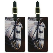 Beautiful White Horse Reins Tack Harness Luggage ID Tags Cards Set of 2
