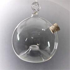 2 Stück Fliegenfalle Insektenfalle Wespenfalle Mückenfalle aus Glas Top Qualität