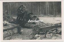 Foto Russland-Feldzug russisches Jagdflugzeug Polikarpow abgeschossen 2.WK (t23)