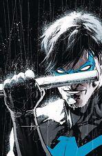 Nightwing Rebirth #1 Javi Fernandez Regular Cover DC Rebirth Comic