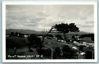 Point Arena, CA   MENDOCINO COUNTY WIDE BIRDS EYE SMALL TOWN VIEW   RPPC