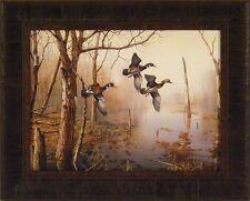 BACKWATER by Jim Hansel 17x21 Wood Ducks Woodducks FRAMED PRINT PICTURE