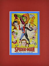 SPIDER-MAN - OLD & NEW w VILLAINS PRINT PROFESSIONALLY MATTED