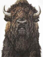 Modern Home Artwork Wall Decor Buffalo Animals Oil Painting Printed on canvas