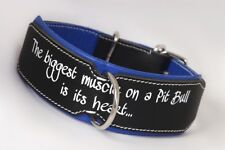 Pitbull Leather Dog Collar PitBull durable neck collar Hand Stitched