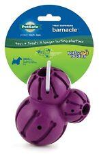 PetSafe Busy Buddy Barnacle