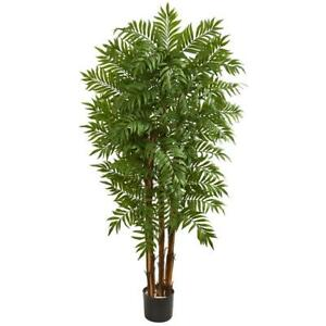 Nearly Natural Artificial Plant Palm Tree 5.5 ft. Plastic Indoor Black Base