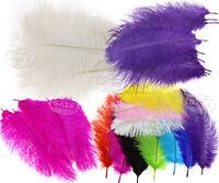 "10Ostrich Feathers 25-30cm Choice DIY Craft Wedding Party Decoration 10-12"""