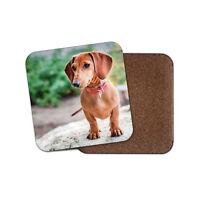 Cute Dachshund Coaster - Sausage Dog Puppy Pet Animal Hound Cool Fun Gift #14804