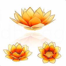 Lotus Capiz Muschel orange Verlauf Goldrand Größe M  Kerzen- Teelichthalter