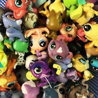 RANDOM LOT 5pcs LITTLEST PET SHOP LPS ANIMALS FRIENDSHIP FIGURES Kid Toys Gift