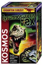 Kosmos 630409 Ausgrabungsset Nachtleuchtender T-rex