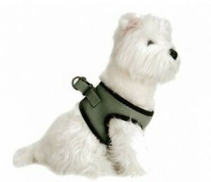 Dog Harness Seatbelt Safe Step In Choke Free Lilly Pad Green XS - L