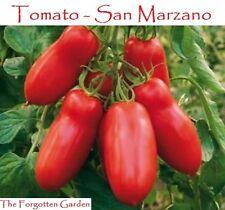 Tomato Seed San Marzano 50 Seeds Heirloom Vegetable Garden Vine Indeterminate
