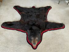 Authentic Black Bear Skin with Head and Claws - Taxidermy - Very Good Condition