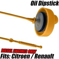 Oil Dipstick With Cap For Renault Clio MK3 Grandtour Modus 1.5 DCI Diesel Only
