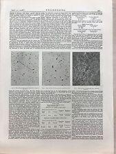 Micro Photos Of Gun Tubes: 1908 Engineering Magazine Print