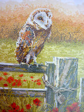 DMC counted cross stitch kit A New Dawn Owl Bird BK1468 14ct aida  8 x 12""