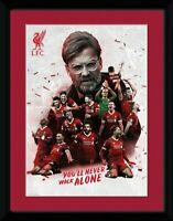 LIVERPOOL PLAYERS COLLAGE FRAMED PICTURE 16' x 20' OFFICIALLY LICENSED