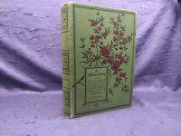 Gaerdt Die Winterblumen 1886 selten Blumen und Blattpflanzen Bouquets Schmuck js