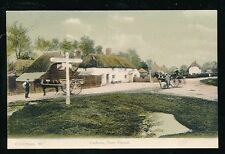 Hants Hampshire CADNUM NEW FOREST pony traps c1900s? PPC by F G O Stuart