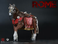 HHModel x HaoYuTOYS NO:HH18007 1/6 Imperial Legion Imperial General Horse Model