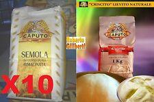 SEMOLA DI GRANO DURO RIMACINATA 10 KG farina caputo +1 kg criscito lievito