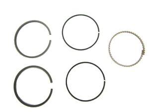 Briggs & Stratton Genuine Parts 843806 Ring Set