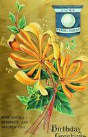 C.1910 Lovely Honeysuckle Gilt Dresden Flower June Pearl Vintage Postcard P40
