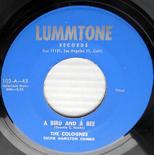 Colognes doowop repro 45 A Bird And A Bee / A River Flows M- Lummtone mg1261