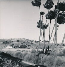 PORTUGAL c. 1950 - Guarda Paysage - Div 4093