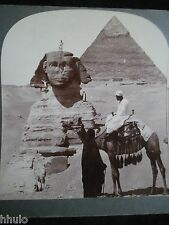 STA181 Sphinx Gizeh Egypte Egypt pyramide Photo Keystone 1900 STEREO-View