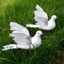 COLOMBA Bird-Realistici Decorazione Giardino-Interno o Esterno-NUOVA VITA REALE