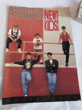 Official New Kids on the Block Giant Big Poster Book Nkotb New