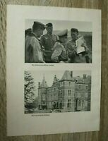 Blatt Bilder Ordonanzoffizier General 1940 Kapitulation Belgien Kühe 2.WK WWII