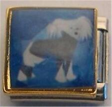 Chinese Crested Painted Portrait Dog Enamel Italian Charm 9Mm Classic New Diy