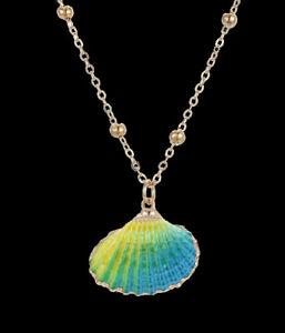 Shell Necklace Pendant Chain Sea Real Shells Cowrie Gold Rainbow Green