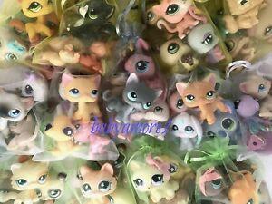 10 RANDOM Littlest Pet Shop  AUTHENTIC Pets CUSTOM Lot DOG Cat BUNNY Turtle BEAR