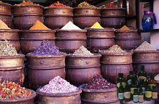 SCENTS OF MOROCCO Fragrance Aroma Candle Soap Making Supplie Spa Aromatherapy