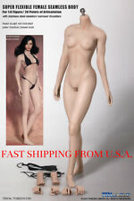 1/6 PHICEN S16A Female Seamless Body Pale M Bust Steel Skeleton TBLeague ❶USA❶