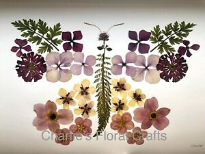Butterfly Giclee Print- Picture Of Original Artwork Made With Pressed Flowers
