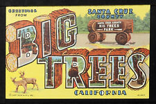 CALIFORNIA BIG TREES 41-Greetings from BIG TREES Santa Cruz Country, California