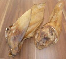 Lot de 100 géant oreilles de bœuf avec coquillage XXL env. 60-80g / unités long
