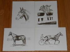 Horse Art Print Kentucky Trotting Thoroughbred Standardbred Pacer Stallion Lot 4