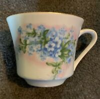 Vintage The Alaskan State Flower Forget Me Not Teacup