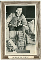1964-67 Beehive Group 3 Denis DeJordy Photo Card Chicago Black Hawks Clean Back