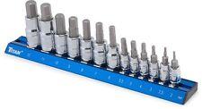 TITAN #16124: 13pc Metric Hex Bit Socket Set.