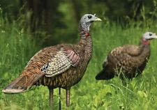 Avian-X By Zink LCD Lookout Hen Turkey Decoy