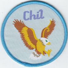 Boy Scout Cub Leader Badge CHIL